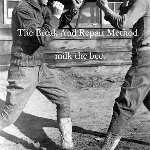 The Break And Repair Method - Milk the Bee